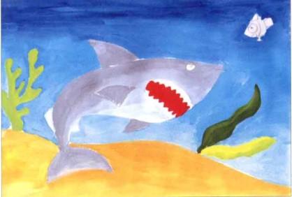 大鲨鱼水粉画