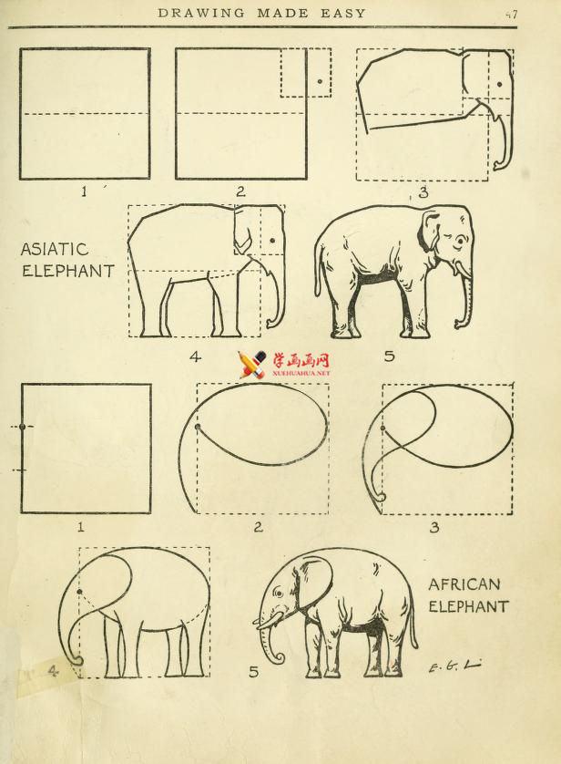教你用辅助线画大象,超简单的画画教程