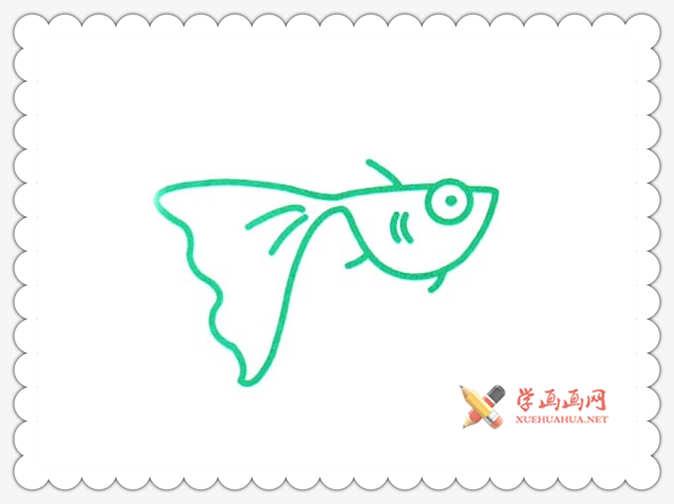 金鱼简笔画(2)
