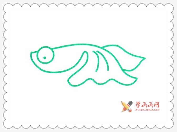 金鱼简笔画(4)