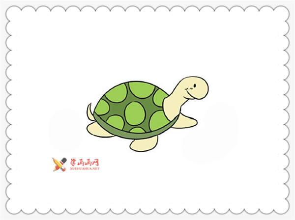 16幅彩色小乌龟简笔画图片