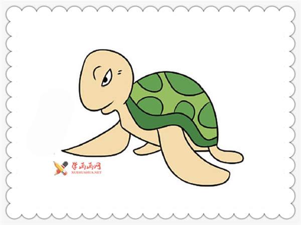 16幅彩色小乌龟简笔画图片__海洋动物_简笔画_简笔画