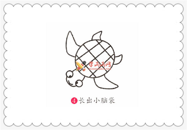 海龟的简笔画画法教程