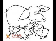 猪妈妈跟一群小猪的简笔画图片
