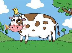农场奶牛的简笔画画法教程画法教程【彩色】