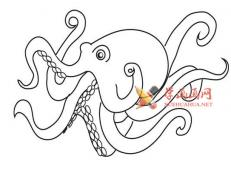 简单的步骤教你画章鱼的简笔画