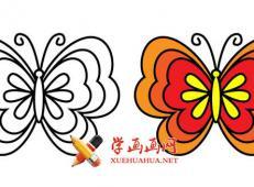 美丽的蝴蝶的简笔画图片大全