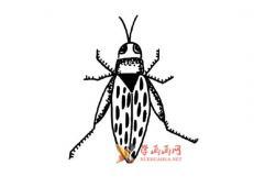 小昆虫的简笔画画法素材大全