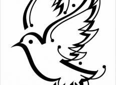 儿童画鸽子,美丽的鸽子简笔画