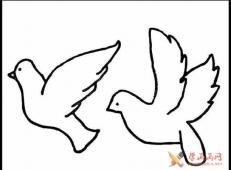 两只鸽子在空中追逐