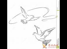 空中快乐飞舞的2只鸽子简笔画图片