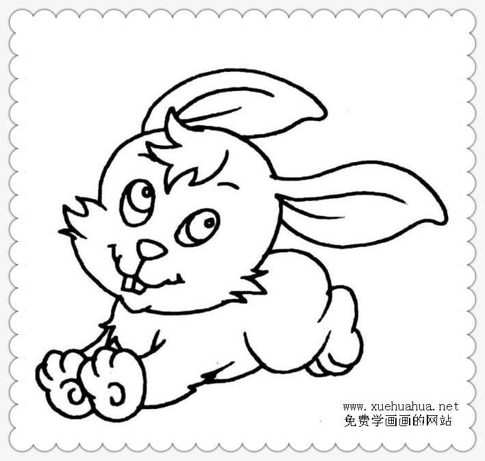 简笔画《奔跑的兔子》