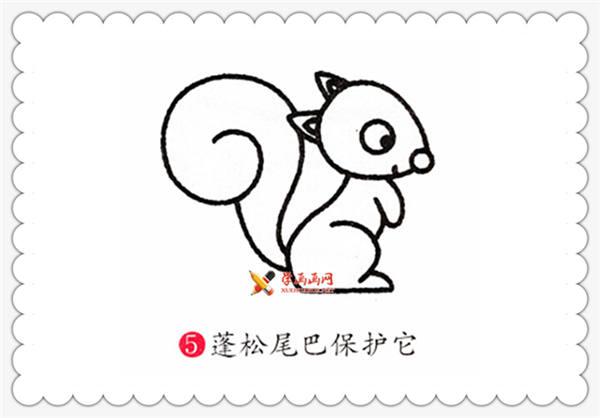 儿童简笔画教程:小松鼠的画法