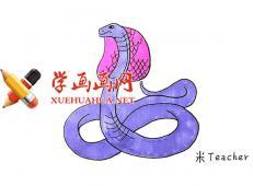 凶猛的眼镜蛇的简笔画教程【彩色】