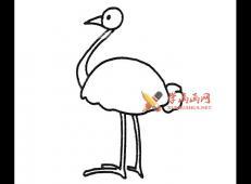 6幅鸵鸟的简笔画画法图片