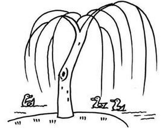 柳树简笔画图片1