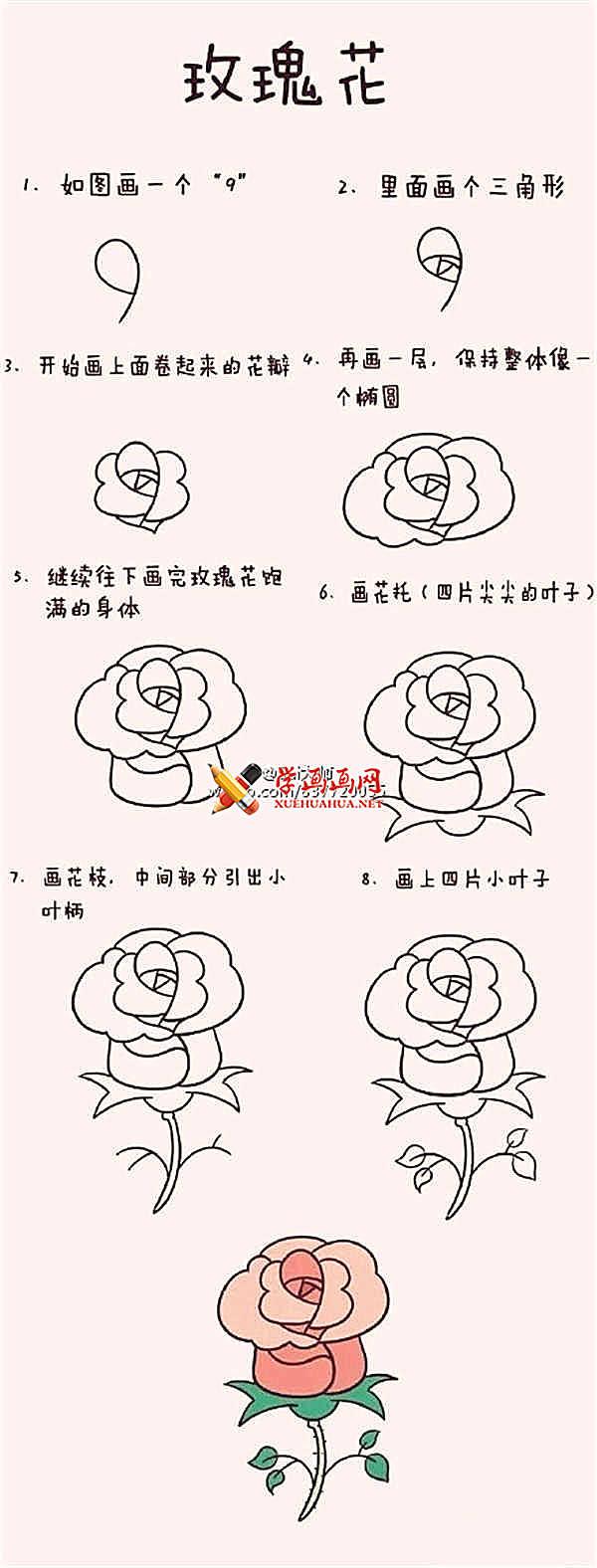 简笔画教程_玫瑰花的画法步骤(1)