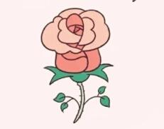 简笔画教程_玫瑰花的画法步骤
