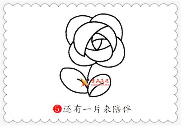 玫瑰花简笔画的画法详细步骤(5)