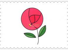 玫瑰花简笔画画法教程