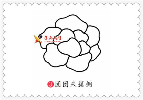 儿童简笔画教程:牡丹花的画法