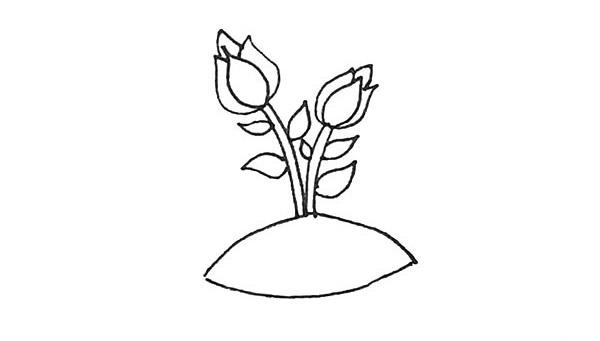 怎么画月季花?儿童简笔画月季花的画法步骤教程(7)