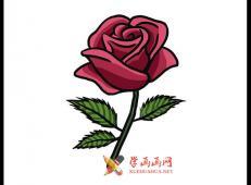 漂亮的红玫瑰的简笔画画法图片