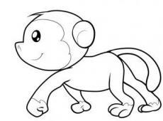 怎么画猴子-猴子简笔画步骤图解