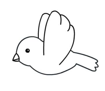 小鸟简笔画绘画步骤六