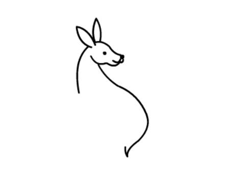 动物简笔画:袋鼠简笔画图片大全【动画步骤】