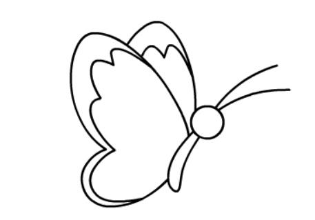 幼儿简笔画动物蝴蝶_有关蝴蝶的简笔画大全