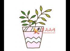 简单的步骤教你画盆栽的简笔画
