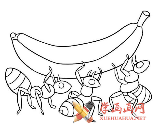 蚂蚁抬香蕉简笔画步骤详解