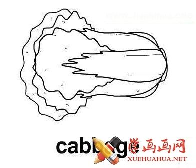简笔画大白菜图片(1)