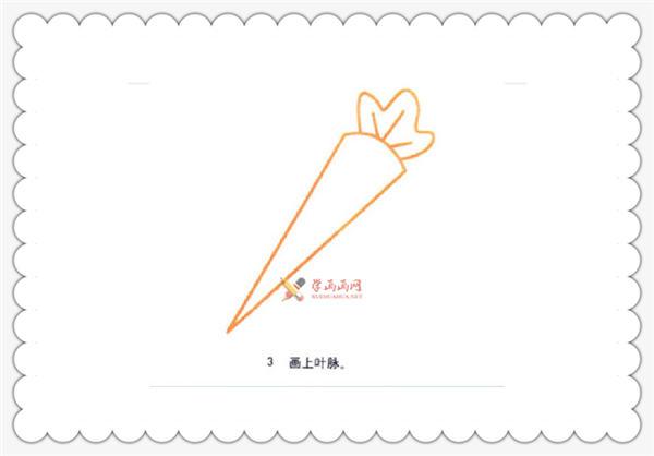 幼儿绘画教程:胡萝卜的简笔画画法(3)