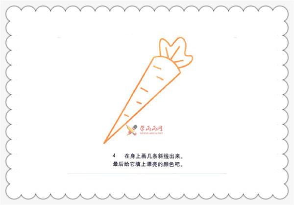 幼儿绘画教程:胡萝卜的简笔画画法(4)