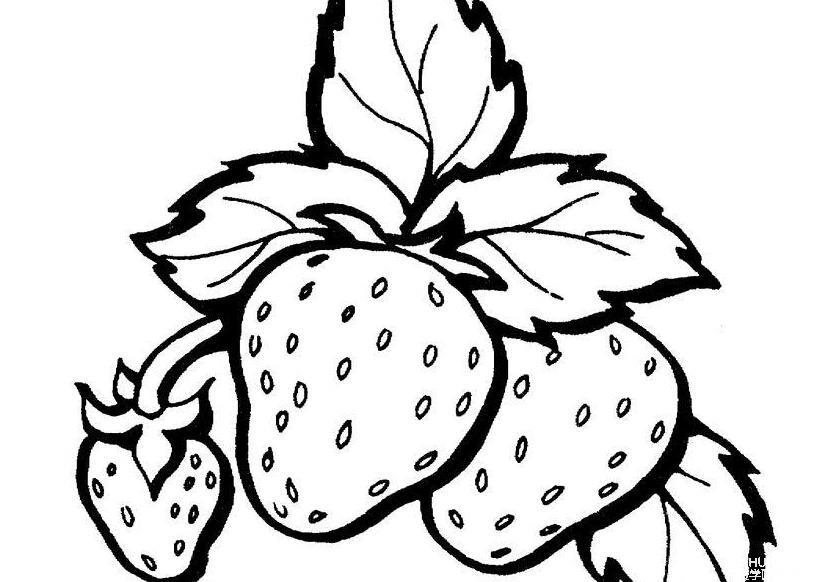 简笔画 水果蔬菜 水果