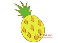 彩色菠萝的简笔画画法教程