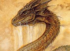 龙的图片大全_史上最全的龙的图片高清大图82幅