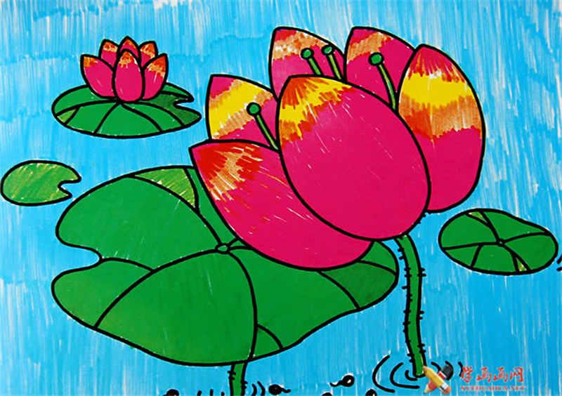 小学生水彩画作品,美丽的荷花