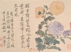 【清】恽寿平国画牡丹欣赏