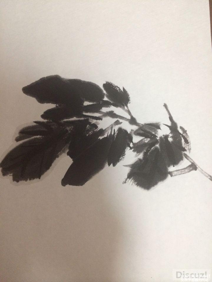 国画教程:牡丹叶子画法步骤5