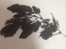 国画教程:牡丹叶子的画法