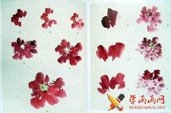 水墨画写意牡丹的画法(1)