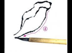 国画牡丹教程:国画牡丹花瓣的画法