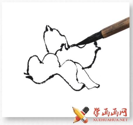 国画牡丹花头的画法步骤教程(勾染法)(4)