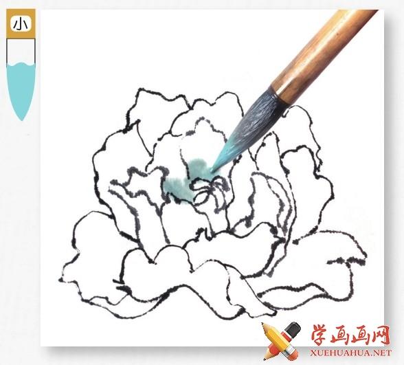 国画牡丹花头的画法步骤教程(勾染法)(8)
