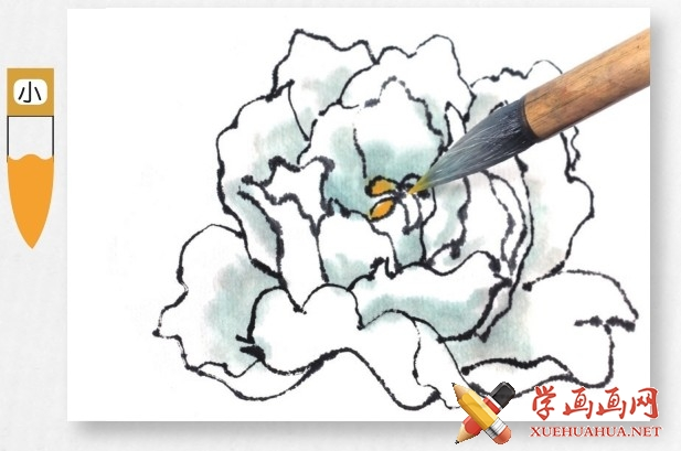 国画牡丹花头的画法步骤教程(勾染法)(10)