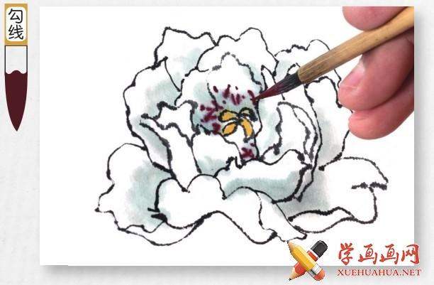 国画牡丹花头的画法步骤教程(勾染法)(11)