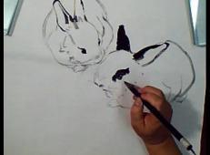 国画视频教程:水墨兔子的画法